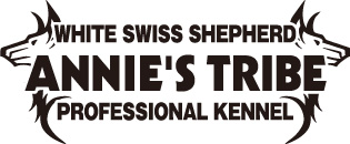 ホワイトスイスシェパード専門犬舎 ANNIE'S TRIBE